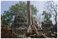 Angkor93