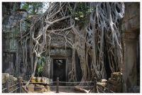 Angkor94