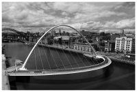 Newcastle6